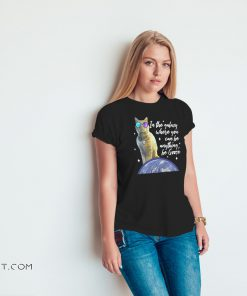 Captain marvel goose the cat in a galaxy where you can be anything be goose shirt