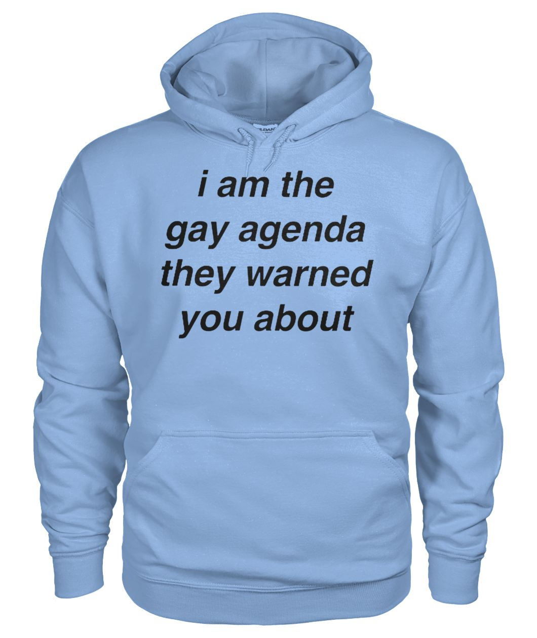 I am the gay agenda they warned you about gildan hoodie