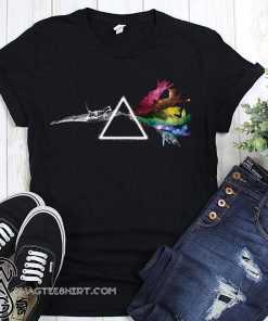 Pink floyd dark side of the cat shirt