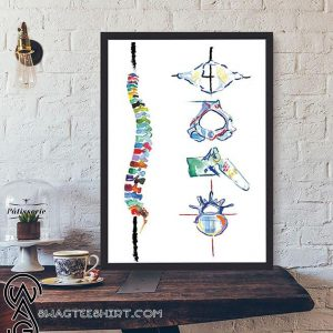 Chiropractor abstract spine and vertebrae anatomy poster