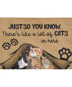 Just so you know there's like a lot of cats in here doormat 3