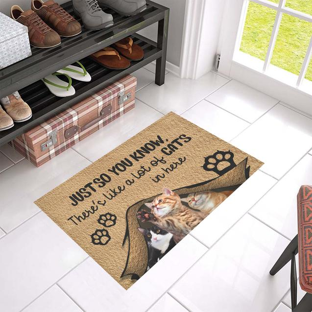 Just so you know there's like a lot of cats in here doormat 4