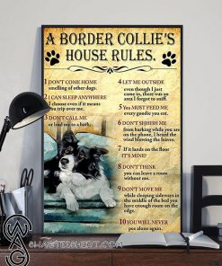A border collie's house house rules poster