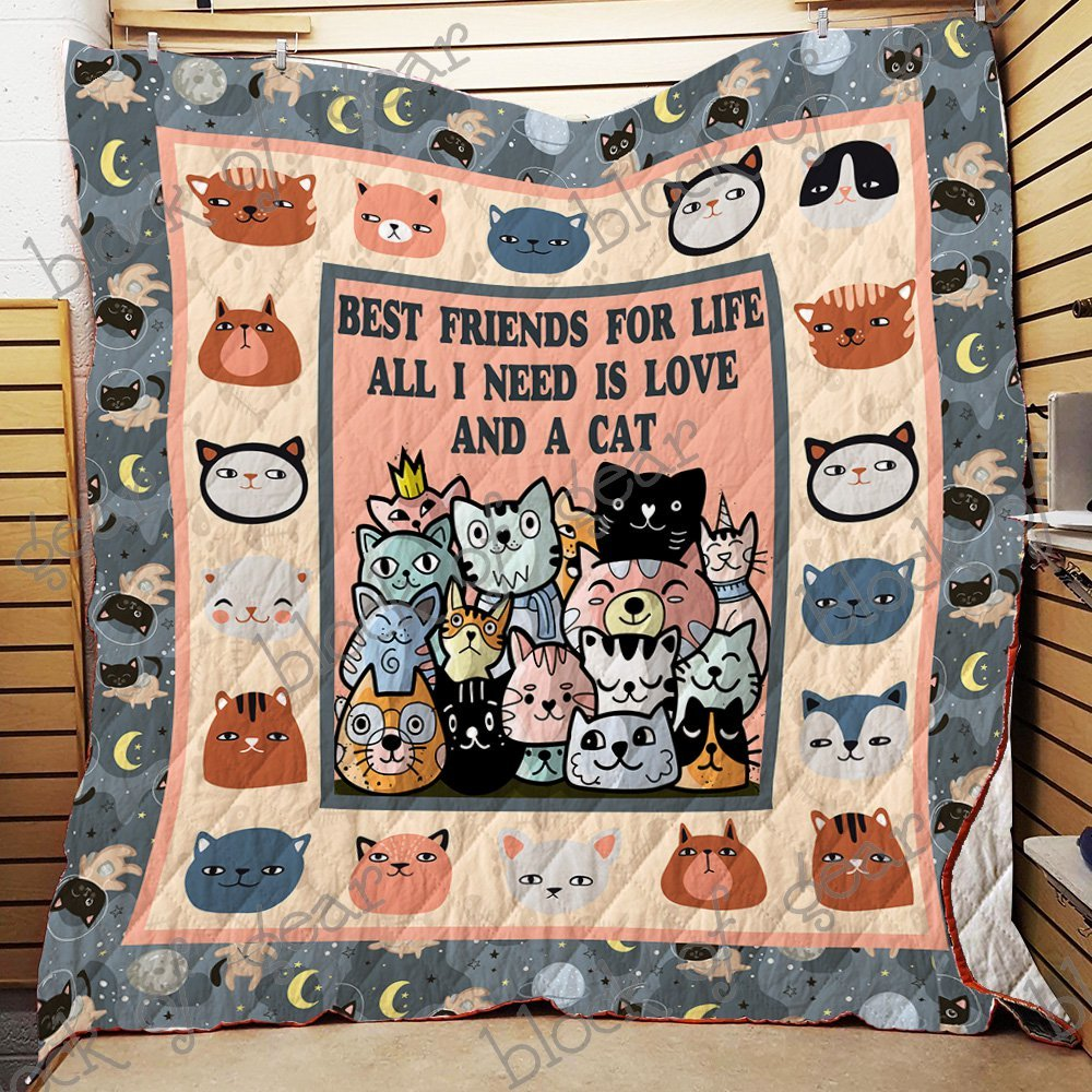 Best friends for life all i need is love and a cat quilt 1