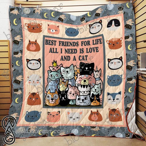 Best friends for life all i need is love and a cat quilt