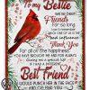 To my bestie we've been friends for so long cardinal fleece blanket