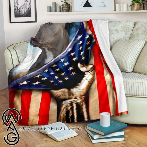 Pitbull behind the american flag blanket