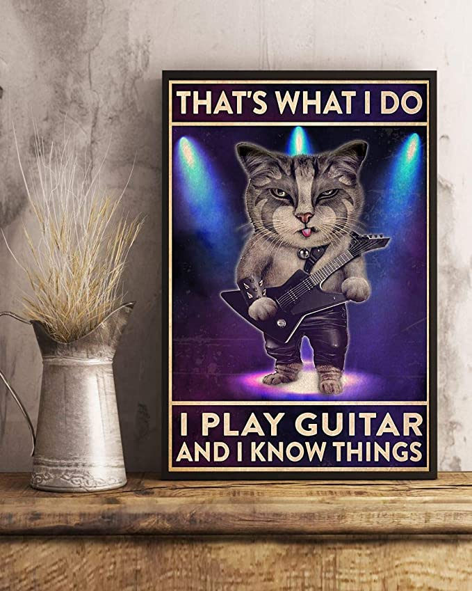 That's what i do i play guitar and i know things cat poster 3