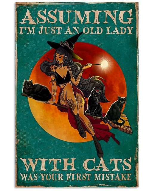 witch assuming i'm just an old lady with cats was your first mistake poster 3