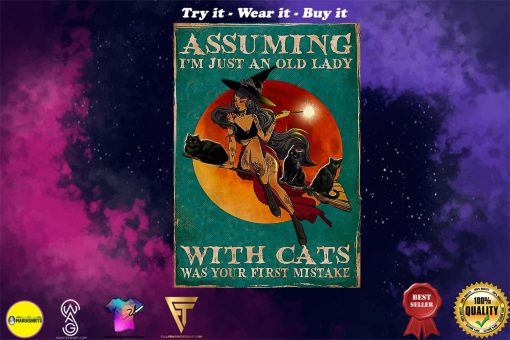 witch assuming i'm just an old lady with cats was your first mistake poster