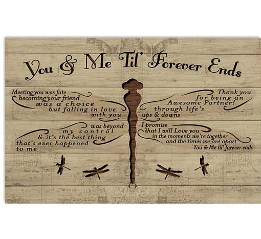 you and me til forever ends dragonfly poster 1