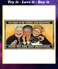 old ladies we used to be young and beautiful now we are just beautiful vintage poster