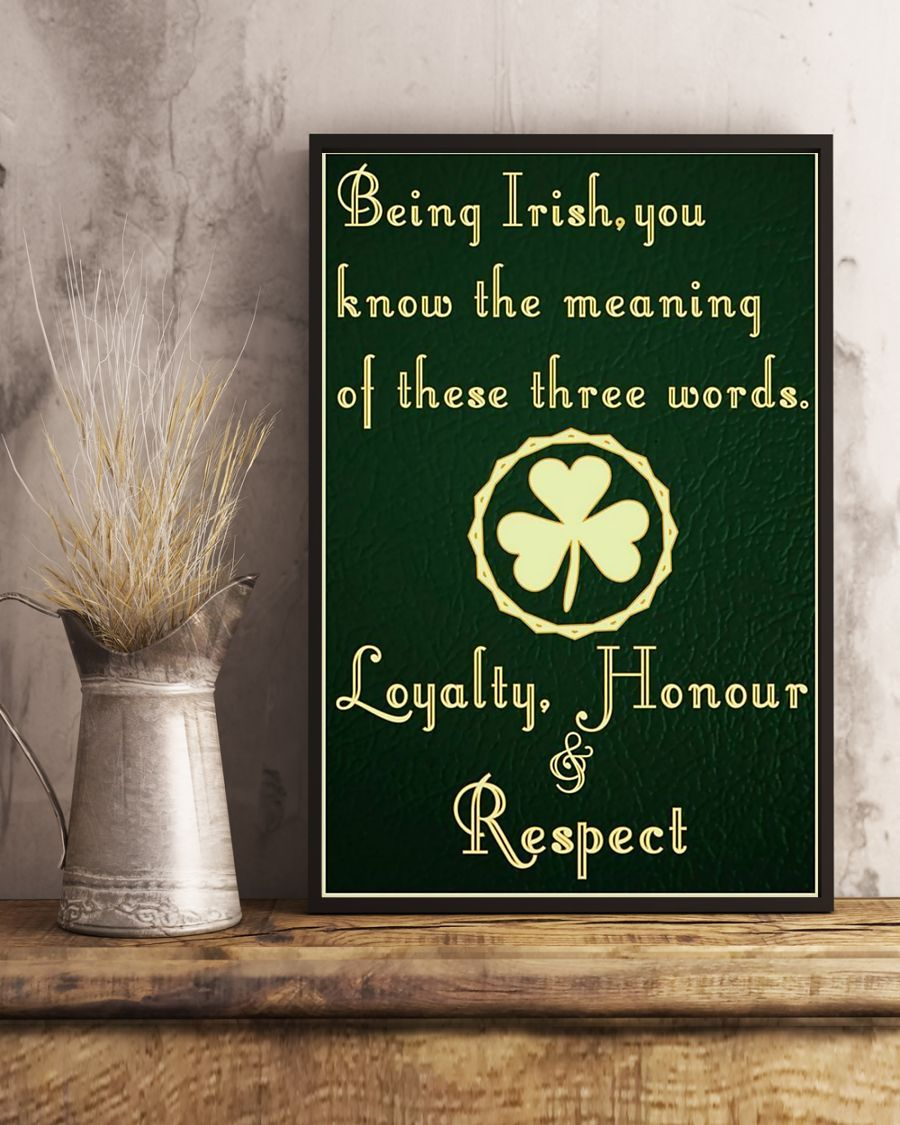 being irish you know the meaning of these words poster 5