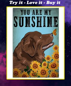 vintage newfoundland dog you are my sunshine poster